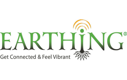 Earthing, top 10 online shopping sites , 10 Best Online Stores, 10 Best Online Stores of Multi-Categories,